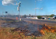Tocantins tem risco de desastre ambiental por causa de queimadas; entenda