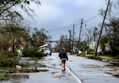 Sobe para 29 o número de mortos pelo furacão Michael na Flórida Comente