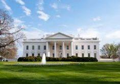 Favorito de Trump para ser chefe de gabinete deixa a Casa Branca