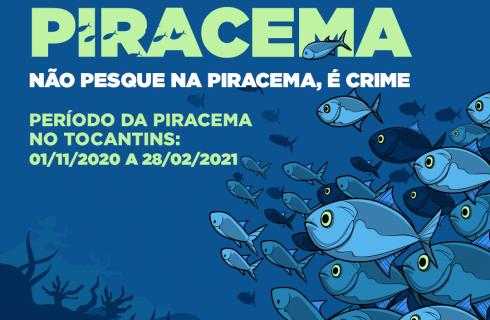 Tocantins lança campanha de sensibilização do período de defeso da Piracema 2020/2021