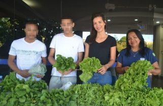 Adolescentes do Centro de Atendimento Socioeducativo comercializam hortaliças