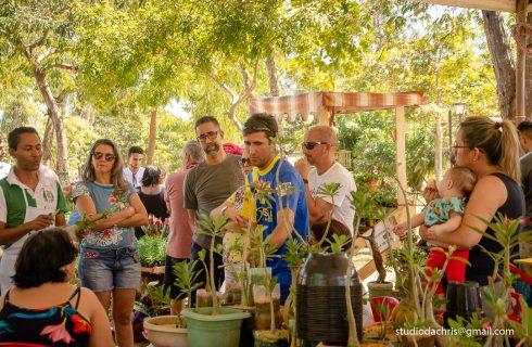 III Exposição de Jardins Encantados acontece neste fim de semana em Taquaruçu