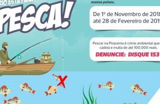 GMP intensifica ações de combate à pesca no período da piracema