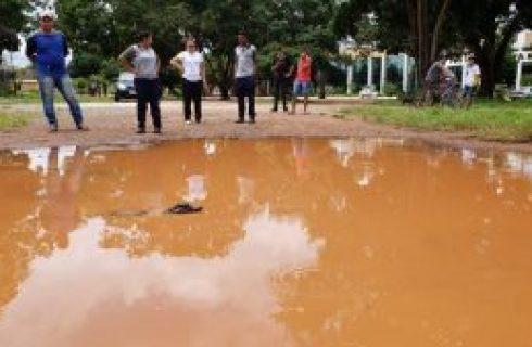 Guaraí: Crianças encontram jacaré em poça de lama no centro da cidade